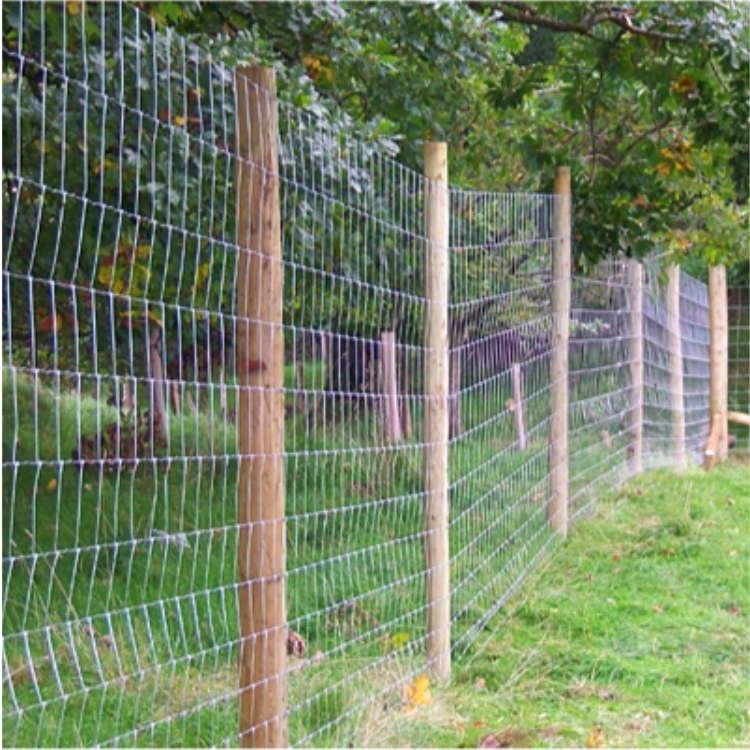 Deer Prevention Fencing