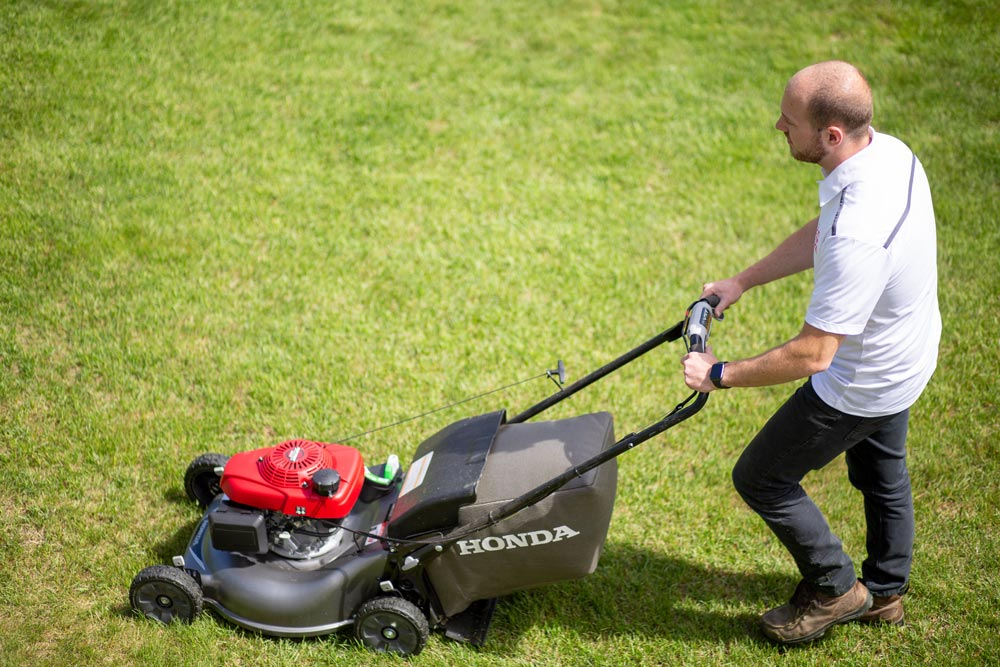 Lawn cutting services in Calgary, AB