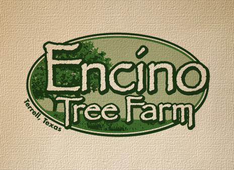 Encino Tree Farm