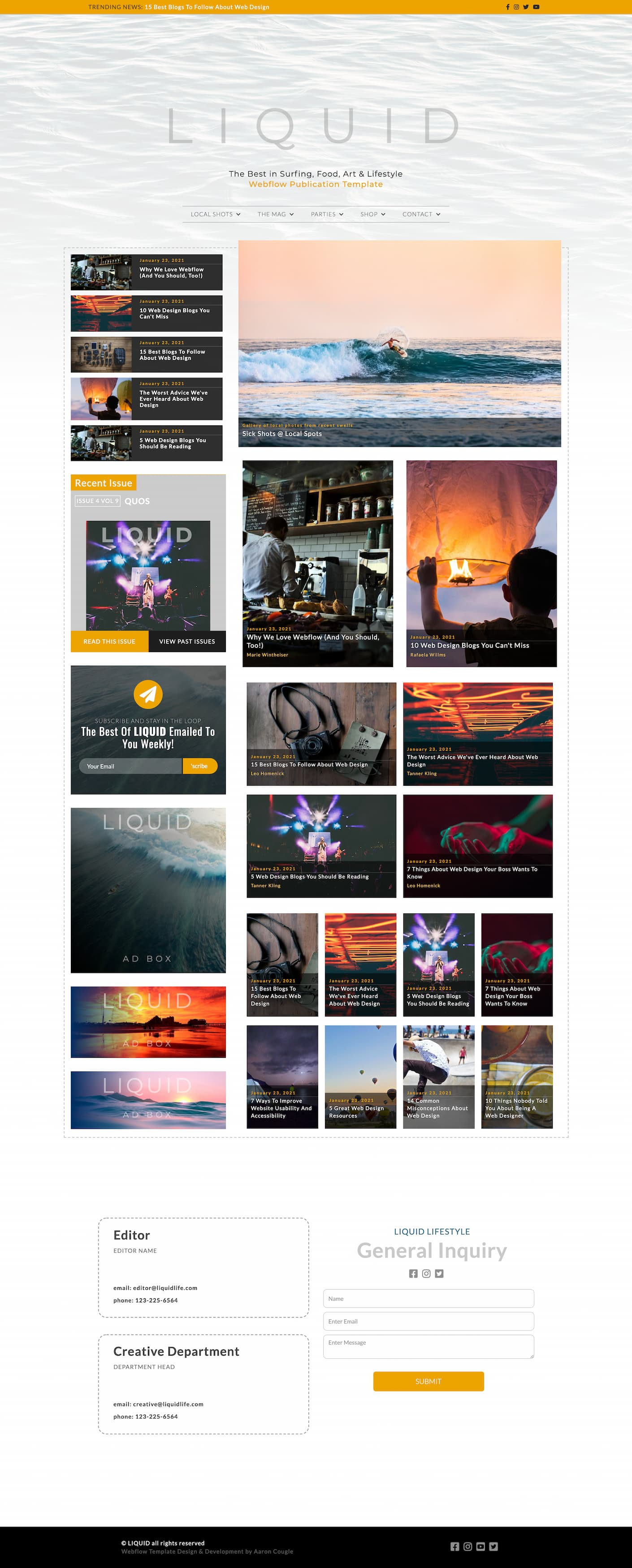 ux design full page image of custom dynamic webflow template called Liquid