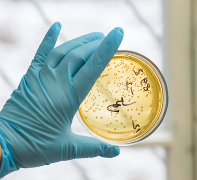 Hydronic Heating reducing airborne pathogens