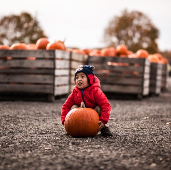 a boy trying to pick up a pumpkin