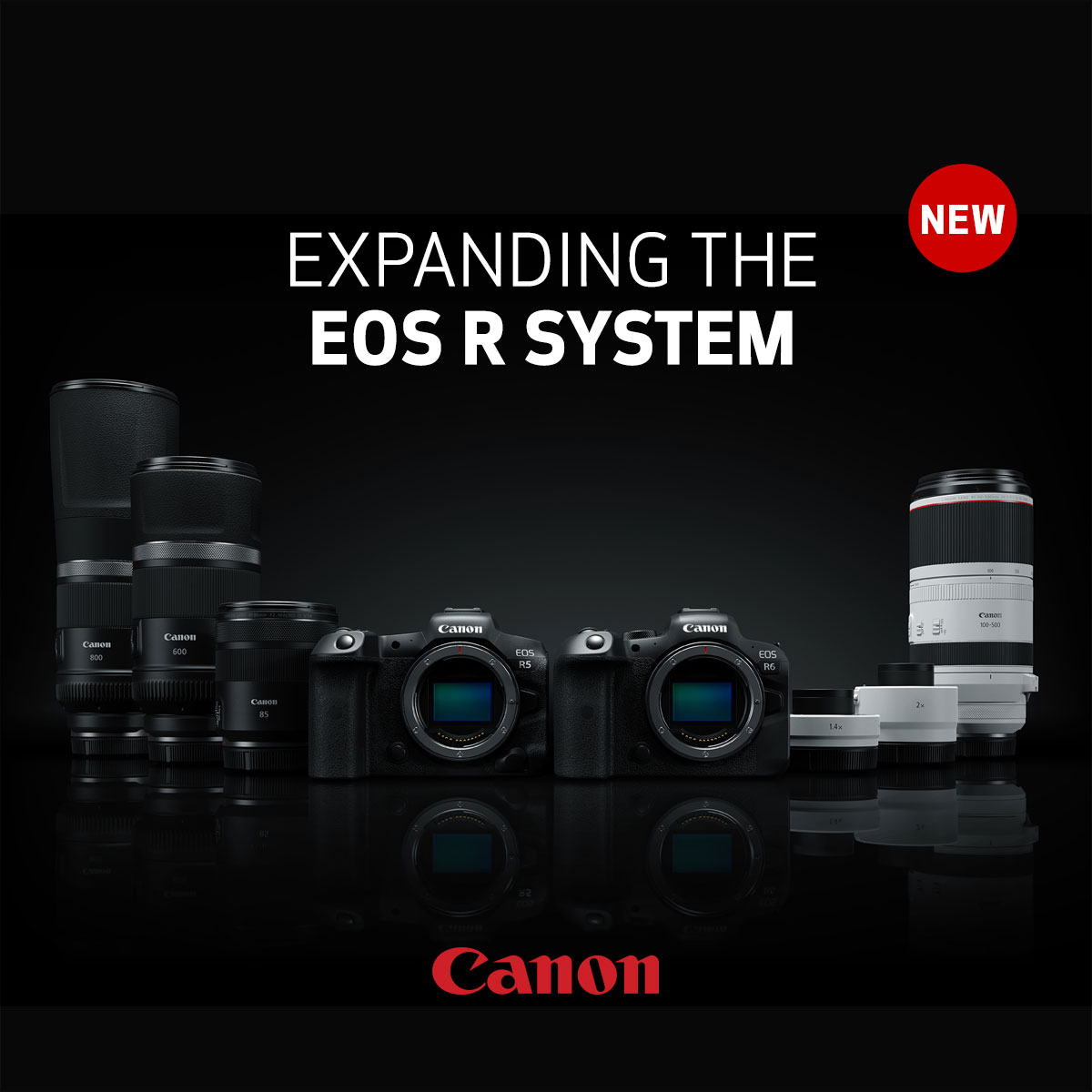 Expanding the EOS R System by Canon - EOS R5 & R6