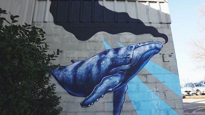 Sludge Whale