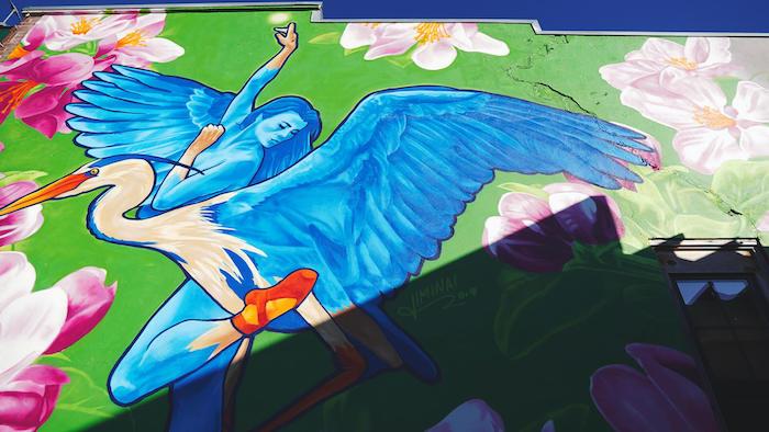 Swan Woman