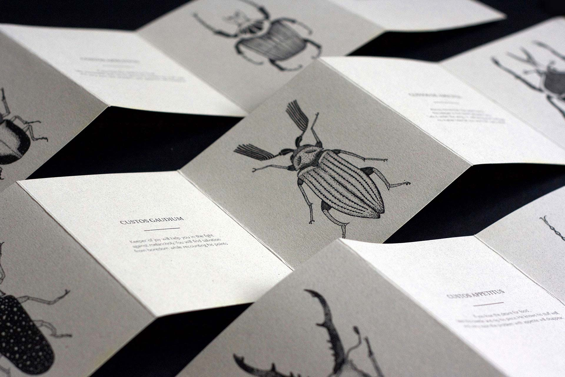 insectology-leaflet