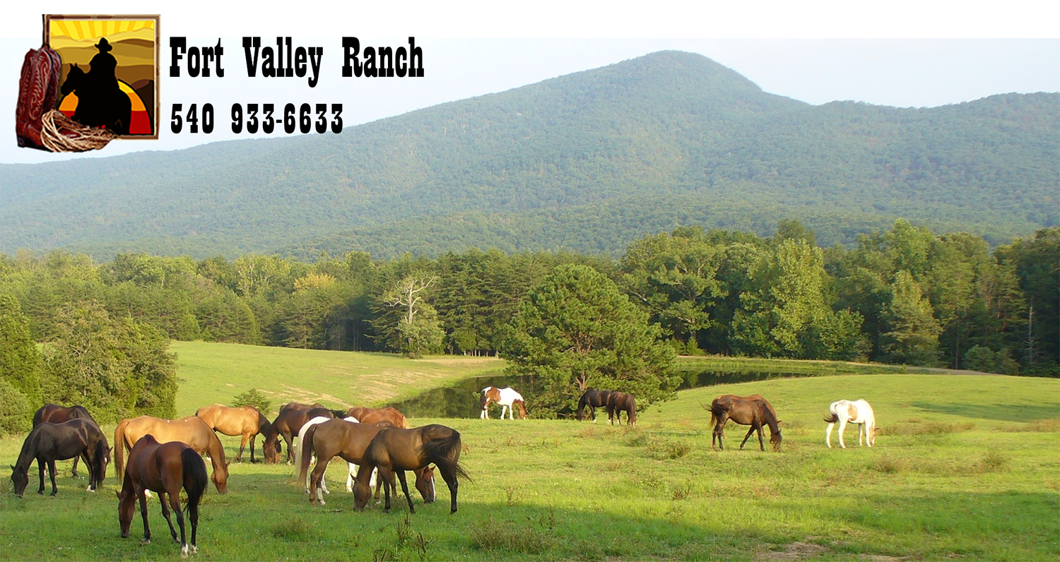 Fort Valley Ranch Spring Mountain Trail Ride