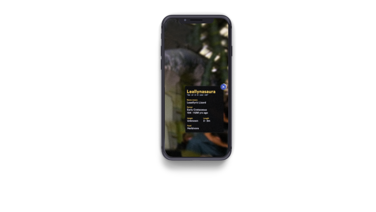 Featured work - Digital Dinos graphic element
