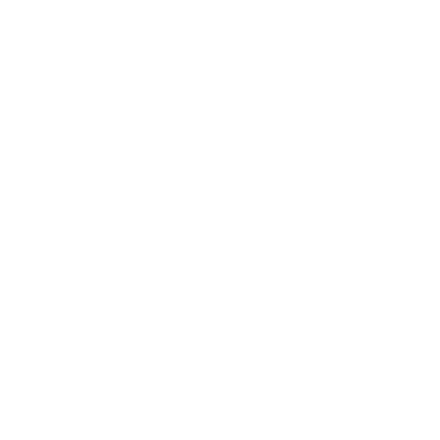 Connect Vest