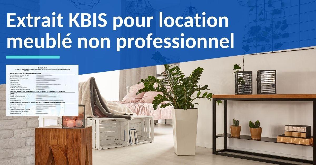 extrait kbis location meublé non professionnel