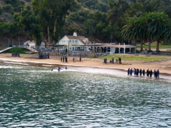 Catalina Island Christian School in Orange, CA