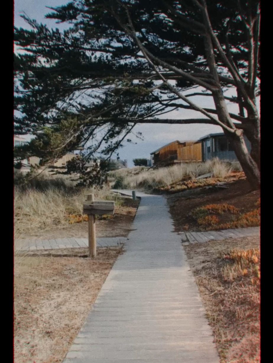 A pathway leading to the beach, shot with Casey's CINE-16 look.