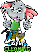 zap cleaning logo