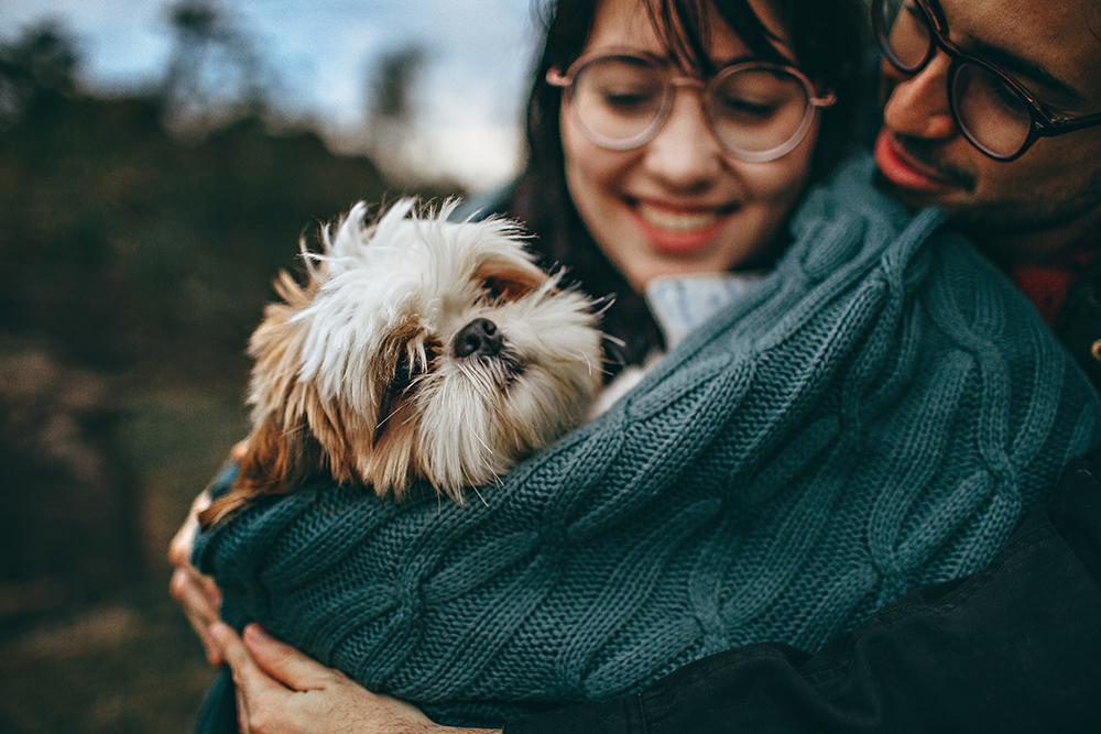 Happy Shih Tzu male and female owners cuddling together
