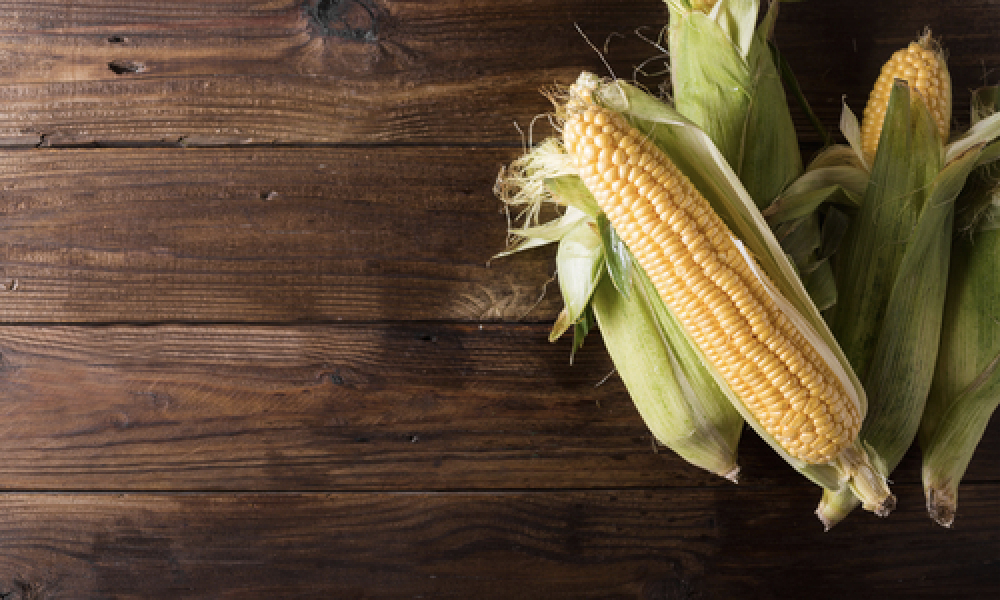 Corn on the cob piled on top wooden surface