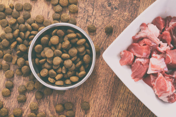 Ariel shot of dry kibble in a bowl next to a plate of raw protein