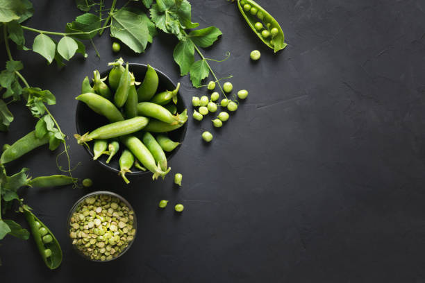 Green fresh pea seeds and branches on black. Space for text. View from above Green fresh and dry pea seeds and branches on black concrete background. Space for text. View from above peas stock pictures, royalty-free photos & images