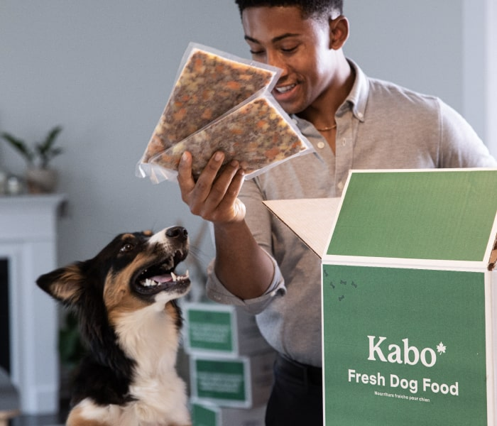 Male dog owner taking out savoury beef meals out of his Kabo delivery box