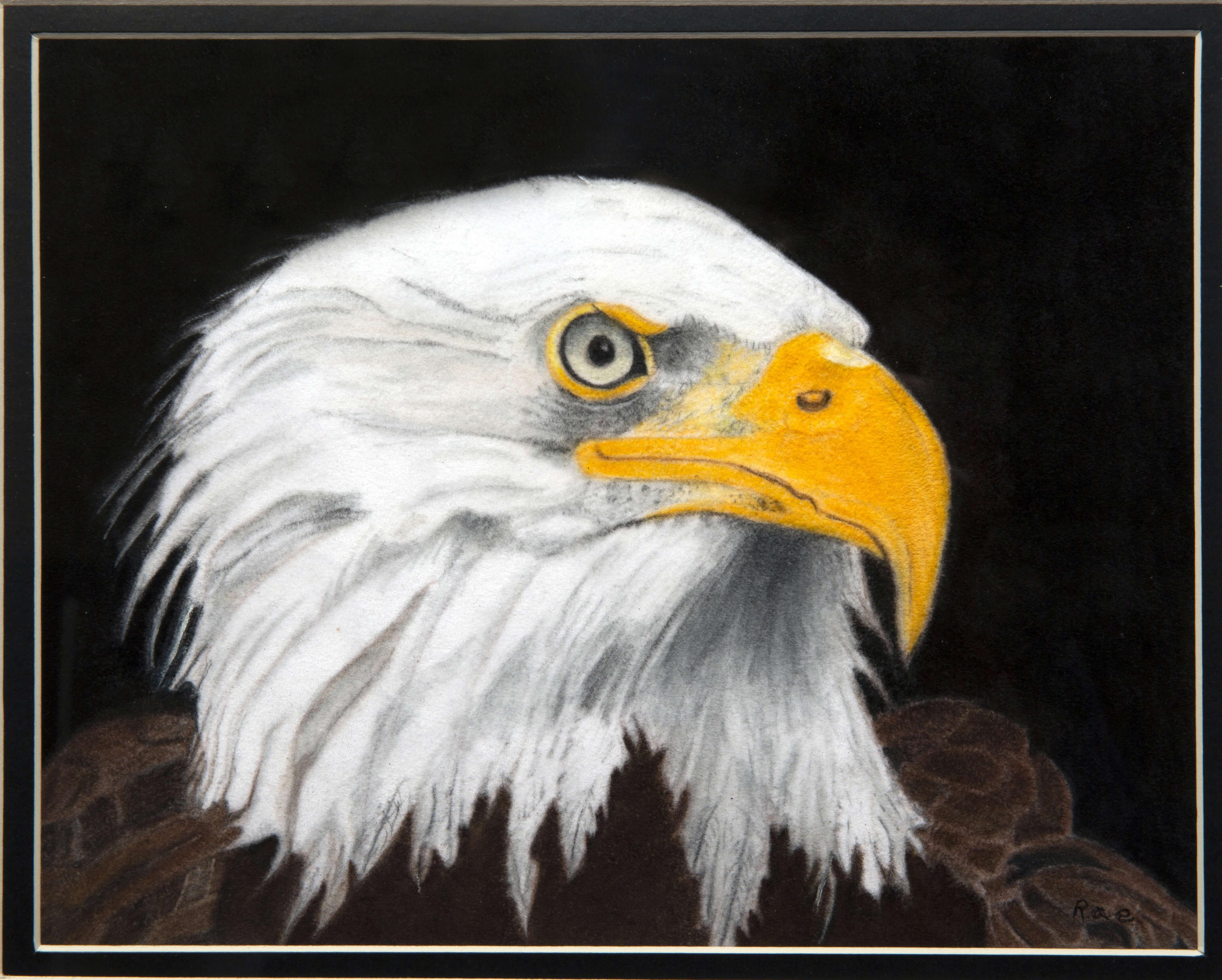 Sharon Nelson's Eagle Eye drawing