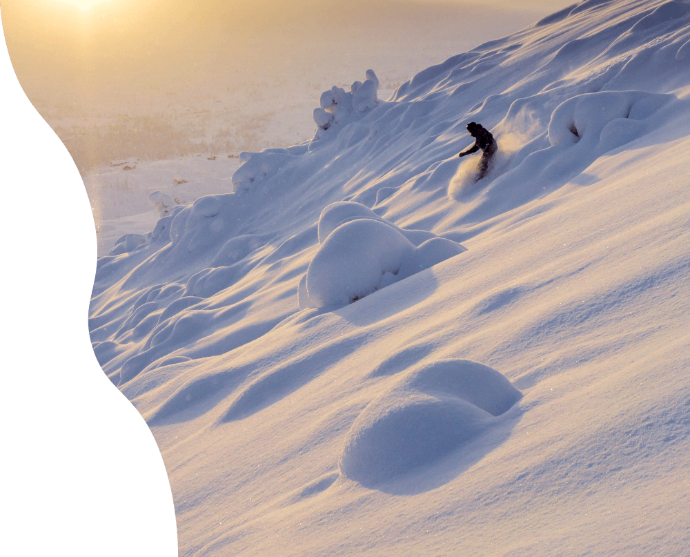 Ski og brett på Høgevarde