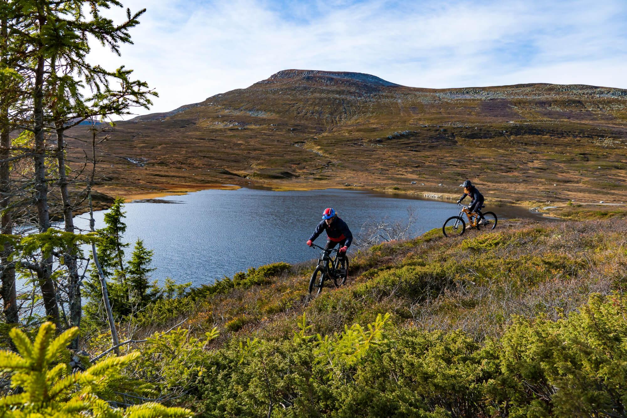 Sykkelstier på Høgevarde nær Oslo