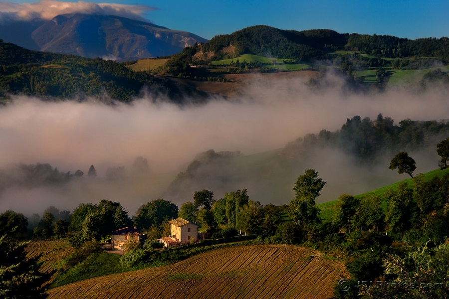 Image credit: The Best of Le Marche