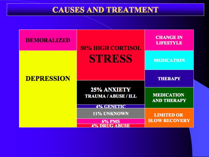 Causes of depression inlude high cortisol stress, anxiety, PMS and Drug abuse