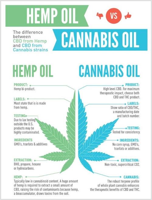 Hemp Oil vs Cannabis Oil chart
