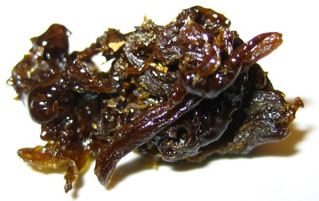 jelly hash or caviar hash