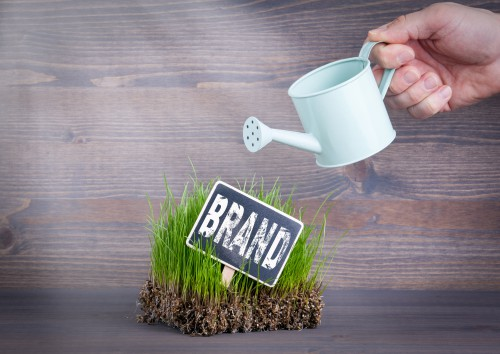 Does Your Website Designer Need to Consider Branding? (Hint: Yes!)