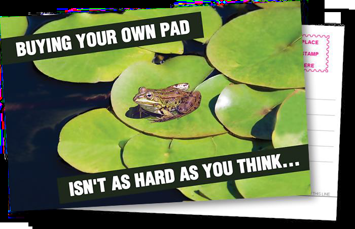 Postcard graphic with a frog on a lily pad.