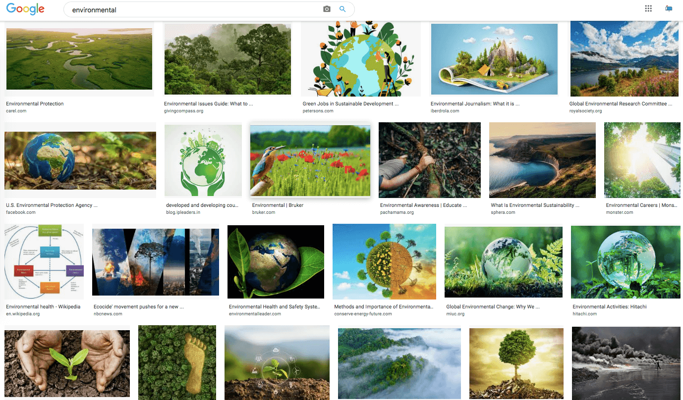 google images of environmental