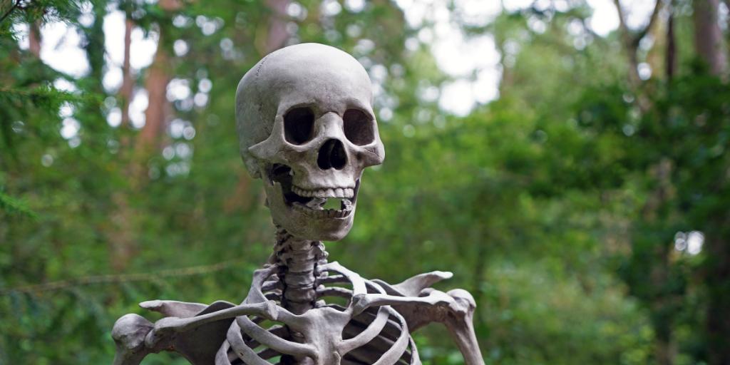 Image of skeleton scaring away candidates