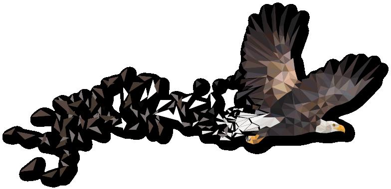 Eagle Illustrated