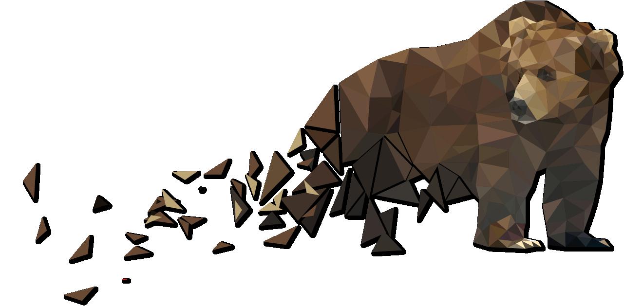 Bear Illustrated