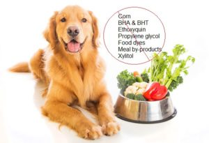 dog-food-ingredients