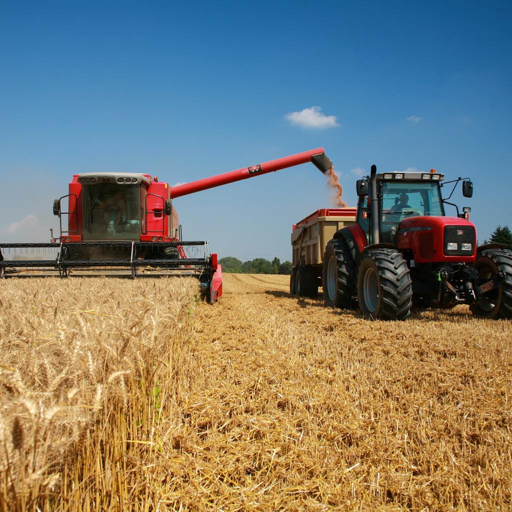 Farms and Estate Insurance