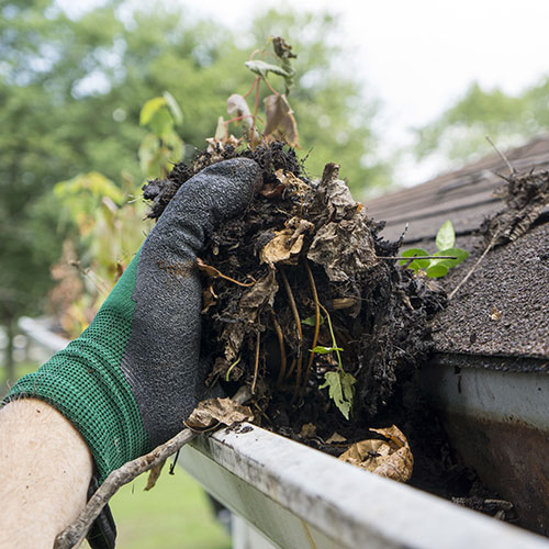 gutter cleaning in escondido