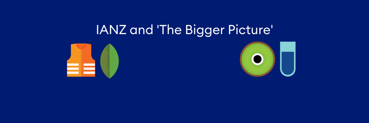 IANZ and 'The Bigger Picture'