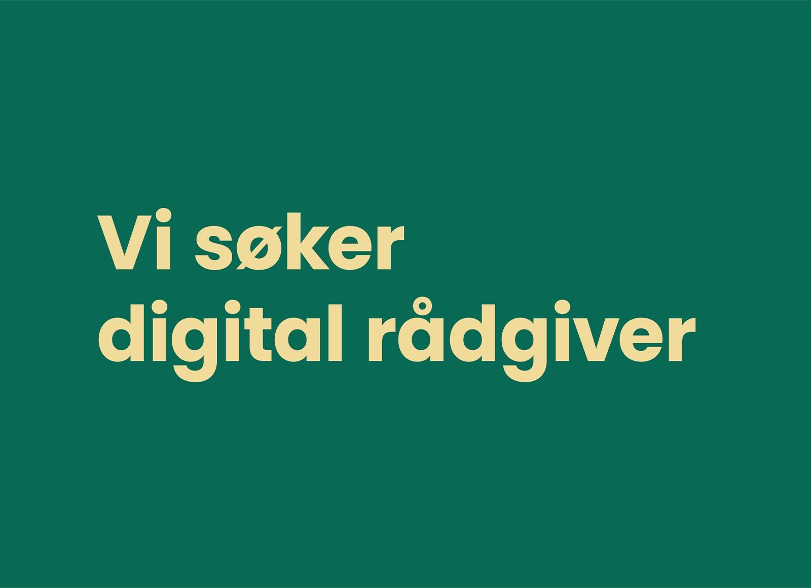 Vi søker en drivende god digital rådgiver