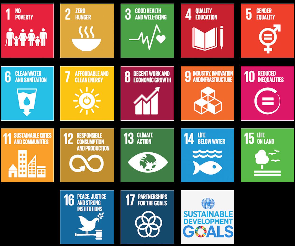 The UN sustainable goals one through seventeen.