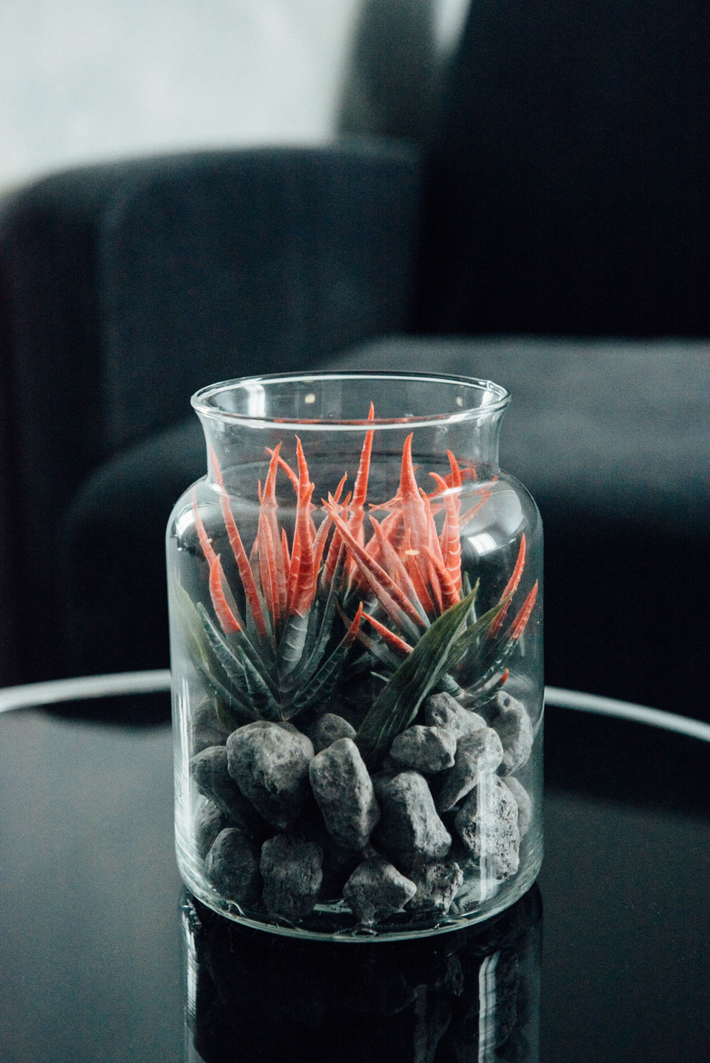 Petite plante verte et rouge dans un bocal sur une table | Amirauté Hôtel La Baule