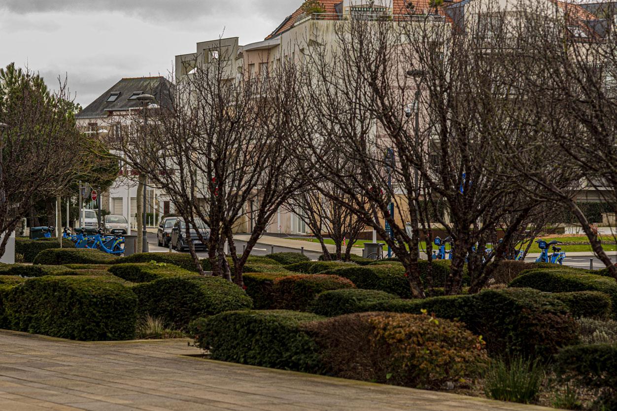 Extérieur ville arbres | La Baule