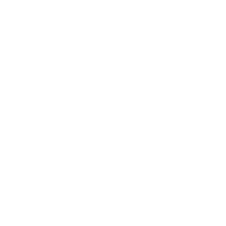 white pentagon icon