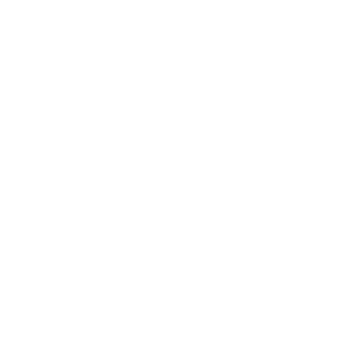 white triangle icon