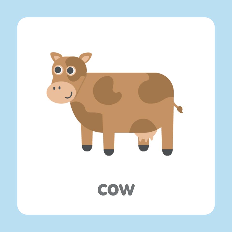 牛英文 cow