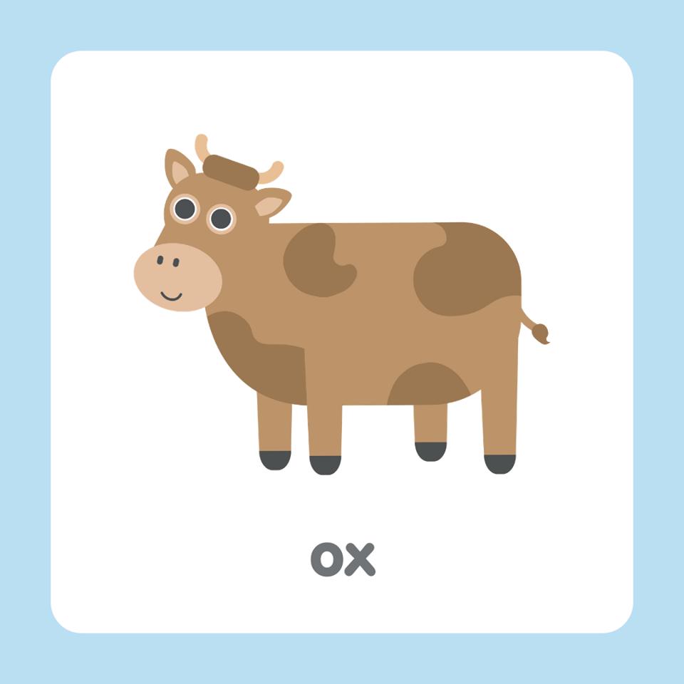 牛英文 ox