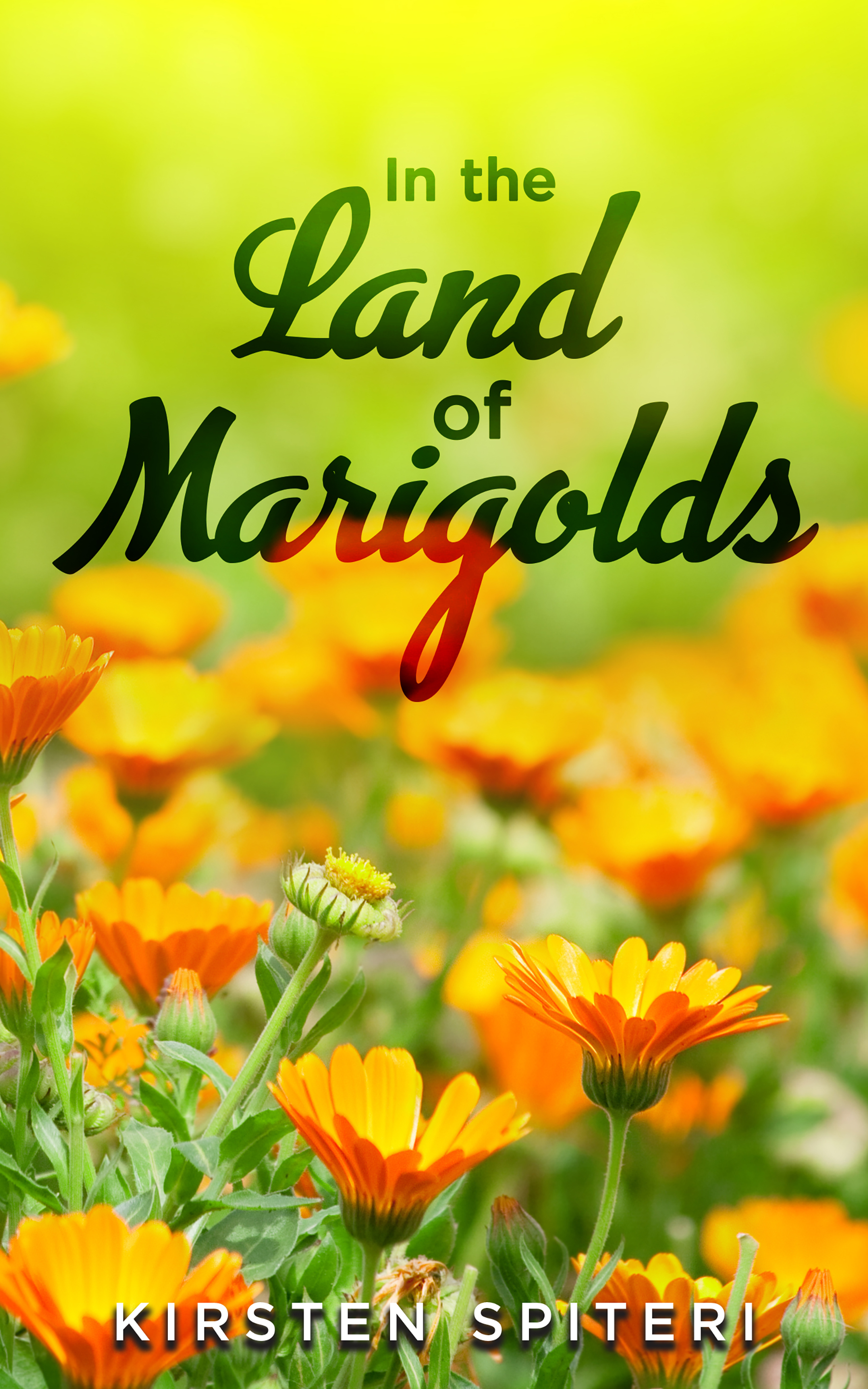 The Land of the Marigolds