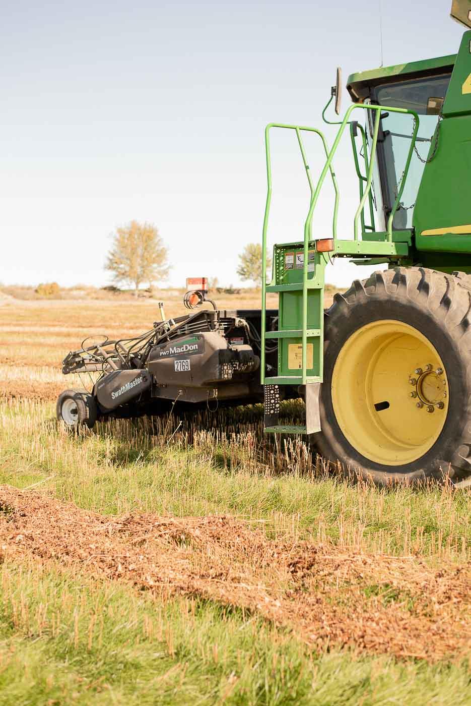 Buckwheat Harvestor