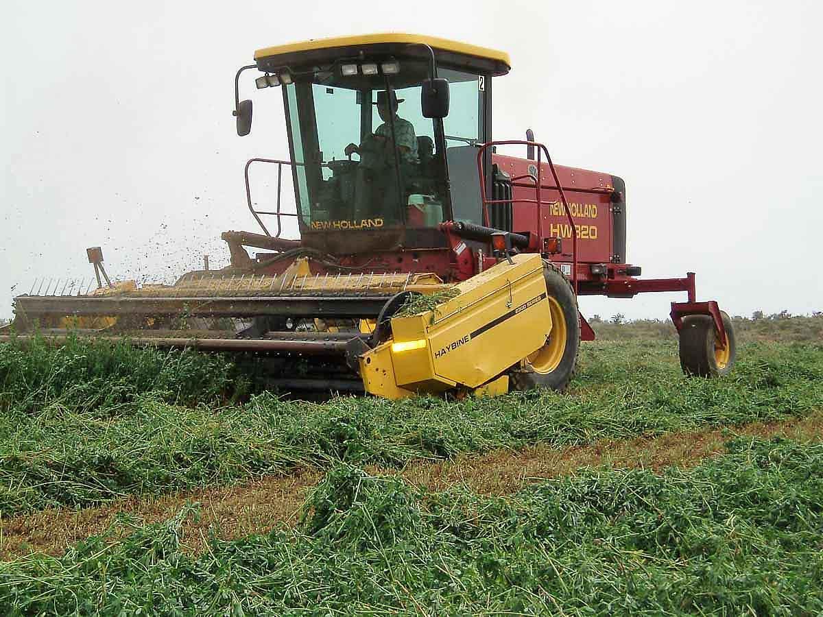 Victory Ag swathing hay